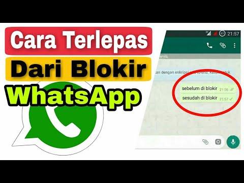 cara-terlepas-dari-blokiran-whatsapp
