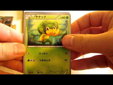 Opening 3 Japanese Collection Pokemon Booster Packs