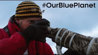 What Does It Take To Be A Blue Planet II Cameraman? #OurBluePlanet - BBC Earth thumbnail