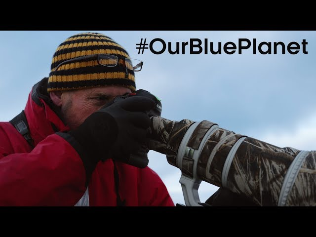 What Does It Take To Be A Blue Planet II Cameraman? #OurBluePlanet | BBC Earth