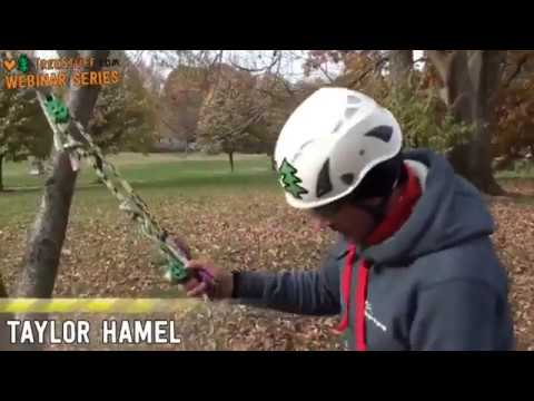Advanced DRT Climbing Webinar with Taylor Hamel - TreeStuff.com
