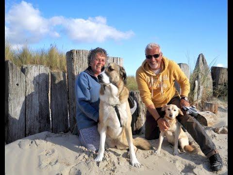 Hondenlevens - Vlog 7 -  Interview Albert & Dymphi en hun adoptiehonden