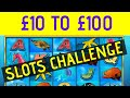 £10 to £100 Slots Challenge at 32Red Casino - Featuring Dolphin Coast Slot & More!