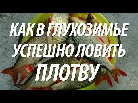 Самодельная прикормка для зимней рыбалки - Самоделки для