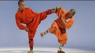 Shaolin kung fu combat: 18 basic methods