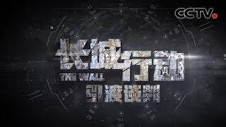 《天网》 长城行动 第二集 引渡谈判 | CCTV社会与法