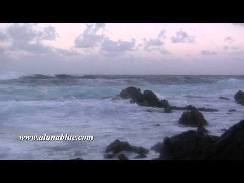 Stock Video - Stock Footage - Video Backgrounds - Tropical 0105