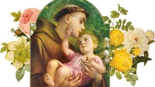 அன்பு  தந்தையே பாடல் - புனித அந்தோணியார் ஜெபம் - St Anthonys Tamil  Song