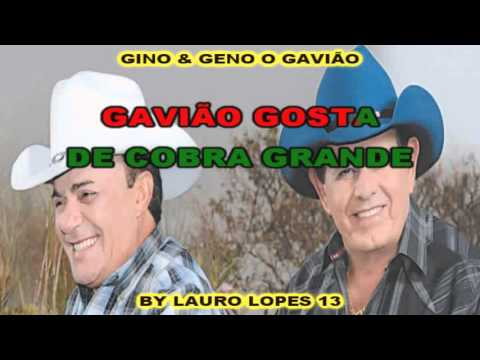 KARAOKE GINO & GENO O GAVIÃO