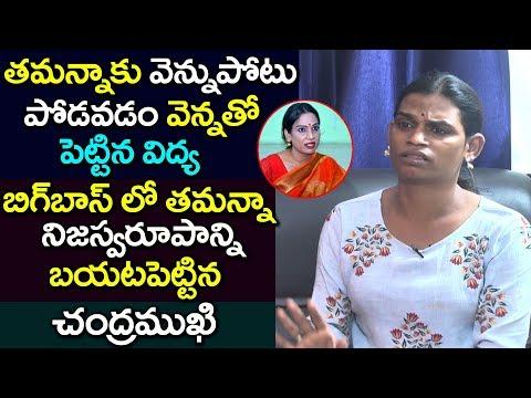 బిగ్ బాస్ లో తమన్నా సింహాద్రి నిజస్వరూపాన్ని బయటపెట్టిన చంద్రముఖి | About Bigg Boss Tamanna Simhadri