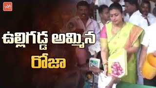 YCP MLA Roja Sell Onions at Nagari Market Yard