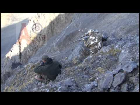 Alaska Dall Sheep And Moose Hunt With Some Bush Flying - WCOA Sheep & Moose Hunts In 14C
