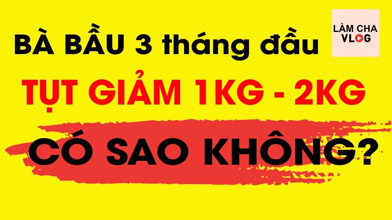 Mang Thai (Bà Bầu) 3 Tháng Đầu giảm 2kg có sao không?