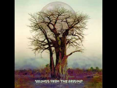 Sounds From The Ground - Move On
