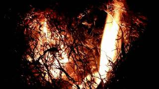TEARS OF THE FALLEN ANGELS  -  Red Blood