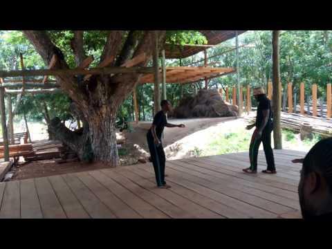 Afrikan Combat Capoeira Wrestling: Ahwenkyɛn (side-slam) Debut