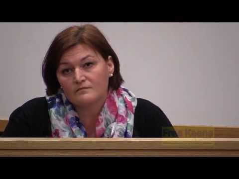 Jennifer Schmidt Stalking Hearing 2015 03 16