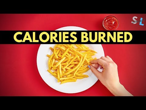 How Many Calories Do You Burn While Fasting - Intermittent Fasting Calories