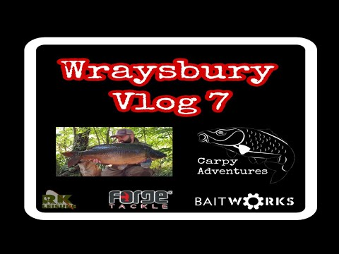 Carp Fishing - Wraysbury Vlog 7 - 2019