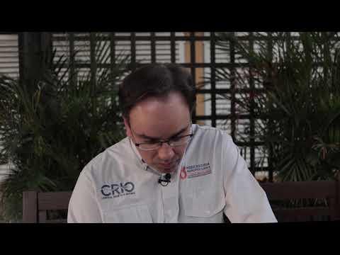 Fernando Velloso fala sobre o leilão FSL Angus Sul