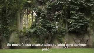 Lucy Rose - Scar [Subtitulado al Español]