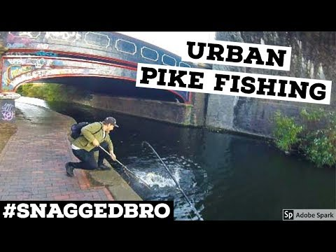 PIKE FISHING With Lures - Urban Pike 2