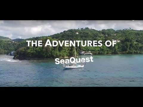 The Adventures of Seaquest |  Caribbean Sea Activism Documentary