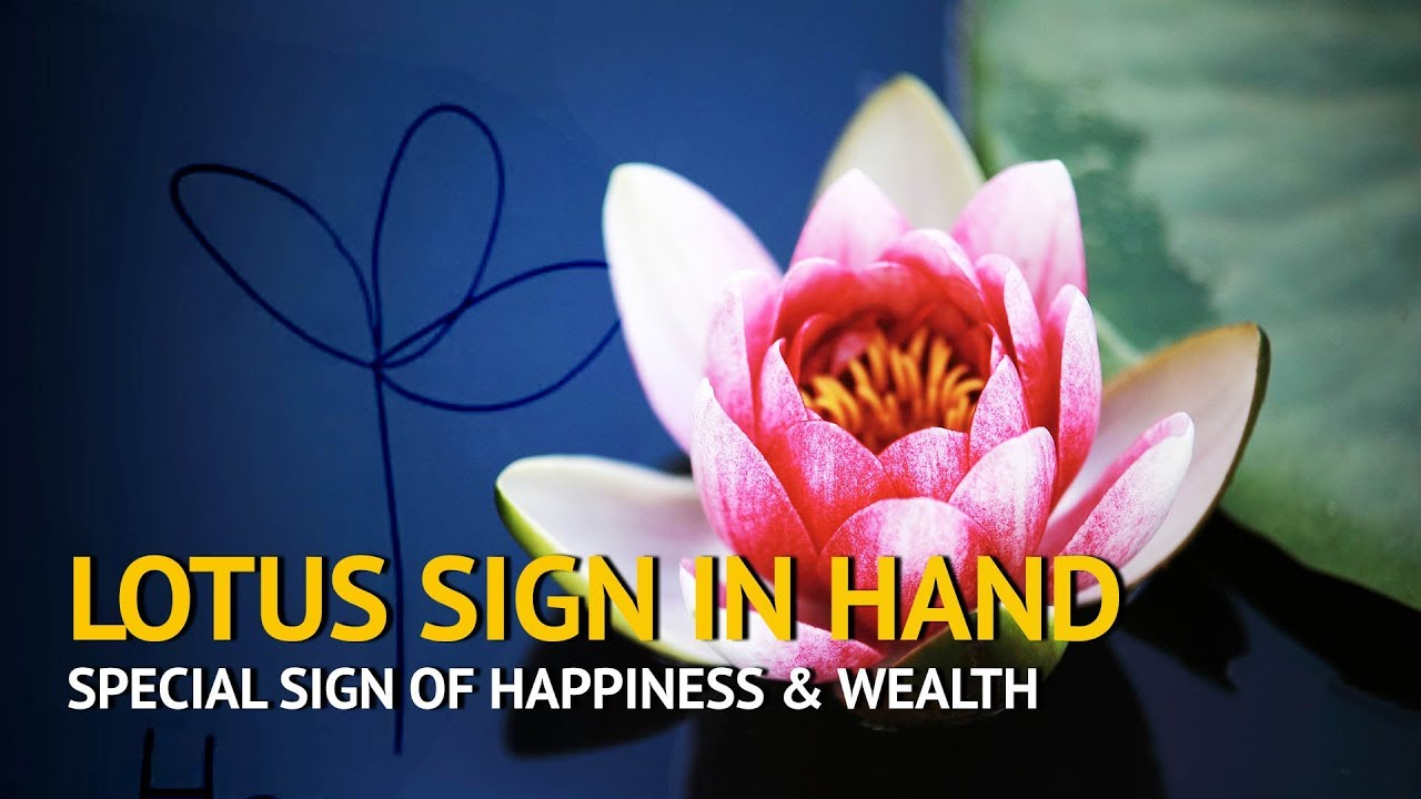 lotus sign in hand special sign of happiness wealth success lotus sign in hand special sign of happiness wealth success palmistry palm reading buycottarizona Choice Image