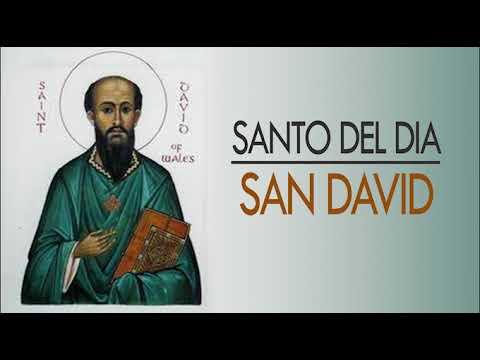 Santo del día - San David jueves, 01 de marzo de 2018