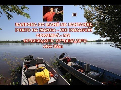 Sanfona do Mané V - PANTANAL