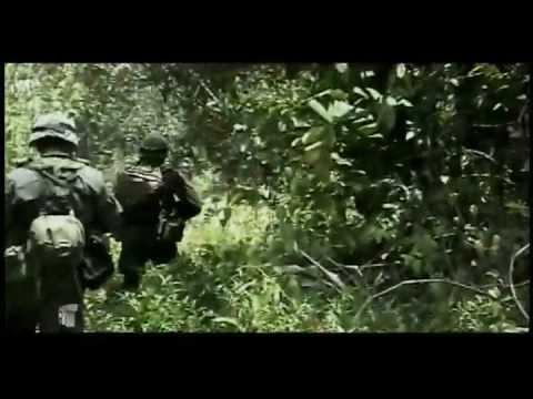 Cauca zona de guerra (3) - Testigo Directo
