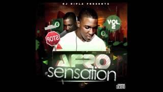 Terminator - Dj Cndo  (Track 22 of Dj Ripla - Afro Sensation Vol 2)