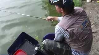 """Поплавочная Ловля Уклейки: семейная рыбалка. Мастер-Класс """"О рыбалке всерьёз"""" видео 189."""