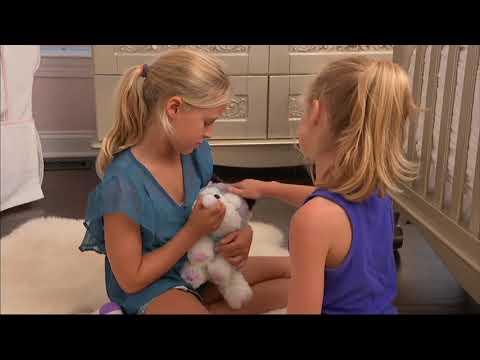 Little Live Pets Tiara And Snuggles Puppies Doovi