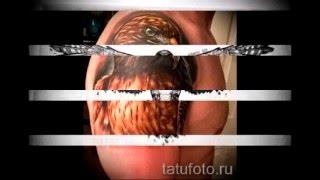 Значение тату ястреб   примеры готовых татуировок на фото