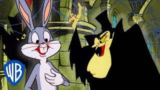 Looney Tunes | A Transylvanian Vacation