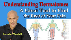 Understanding Dermatomes -- A Great Tool to Find the Root of Your Pain  - Dr Mandell