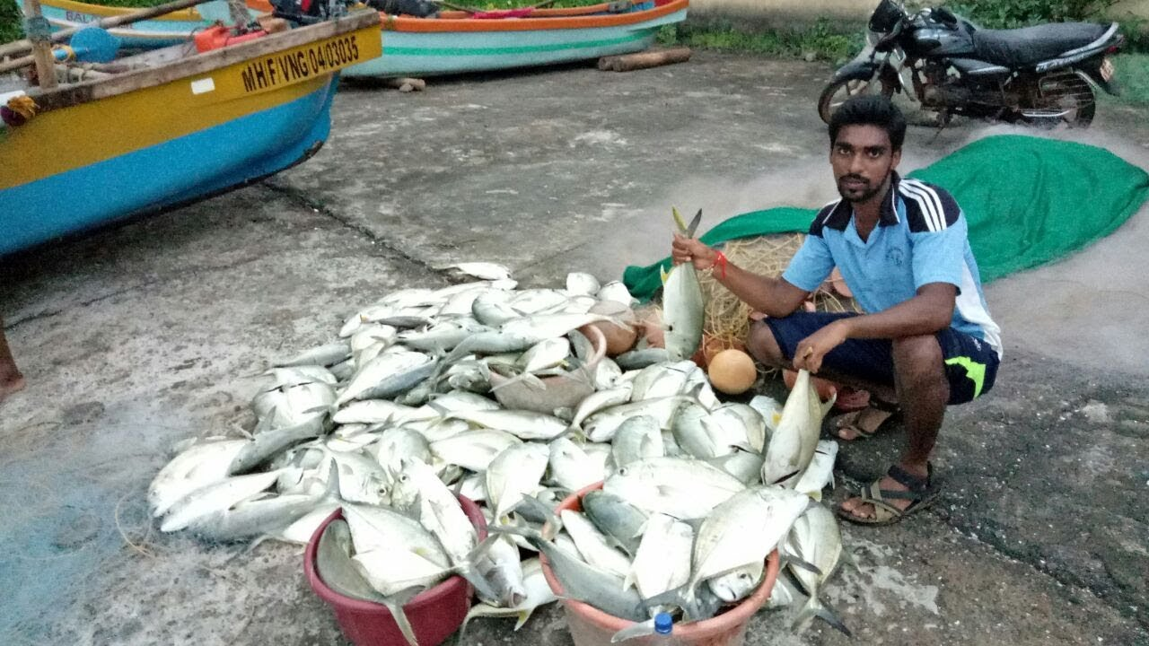 Fishing konkan cha california tambaldeg devgad for One day fishing license ca