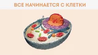 PENTOKAN (ПЕНТОКАН) - Презентация продукта. Красота, здоровье, ЗОЖ, долголетие.