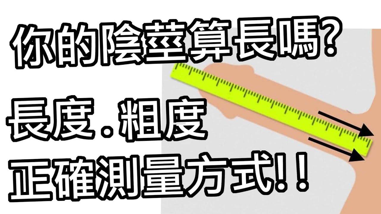 *片尾抽獎*【性學小教室68】你的陰莖算大嗎?男生自己量長度都會灌水!?長度粗度怎麼量!?|陰莖測量正確方式!