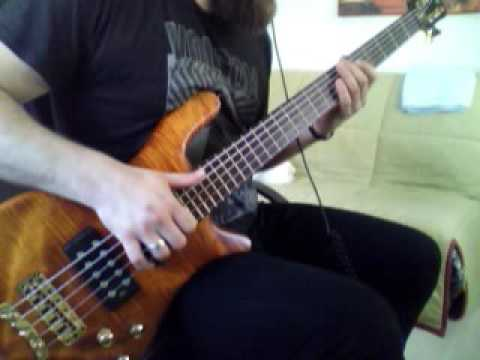 New Skin | Incubus [Bass Cover]