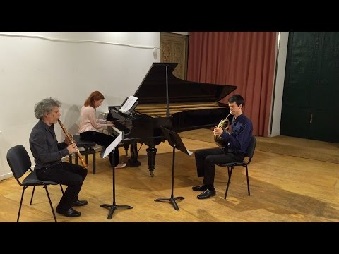 Ensemble Dialoghi - Reinecke Trio (1/4) For Piano, Clarinet And Horn, Op. 274