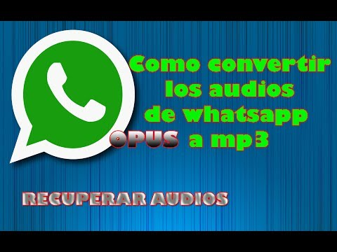 Opus a mp3 audios de whatsapp