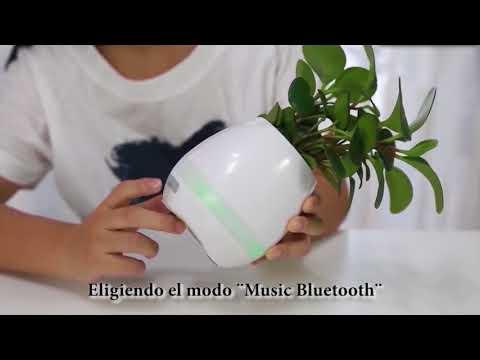 Maceta musical bluetooth