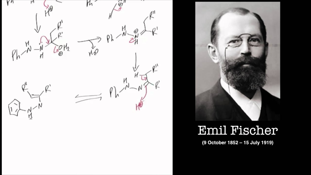 The Fischer Indole Synthesis Reaction Mechanism Tutorial