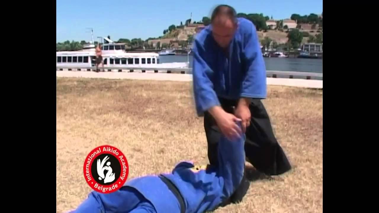 Aikido techniques by Bratislav Stajic: Chudan tsuki irimi nage