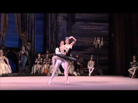 LABUTÍ JEZERO Bolšoj balet - ukázka 2