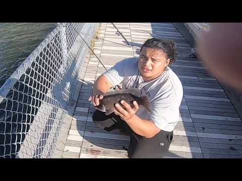 PIER FISHING (BLACKFISH/ TAUTOG) HALLOWEEN