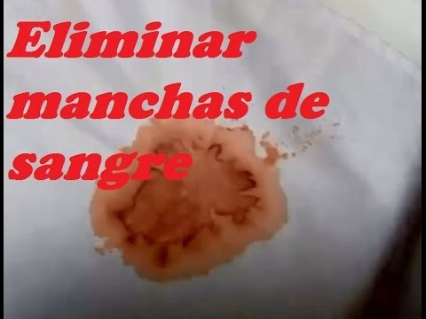 Eliminar Manchas Sangre Remove Stains Blood Youtube