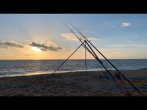 Cod Quest Success 2 - Chesil Beach